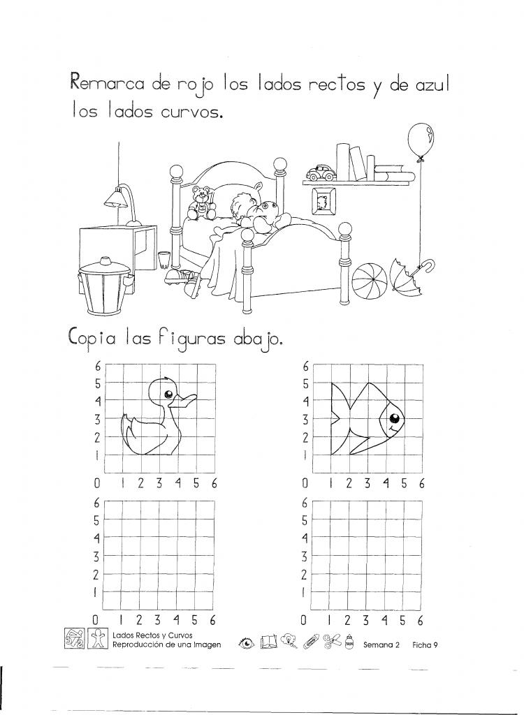 Lados rectos y curvos